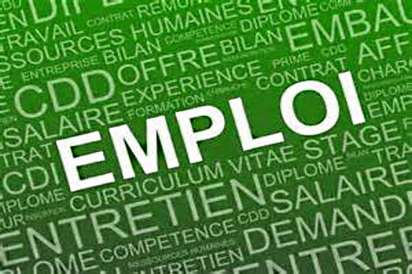 loi sur l'emploi
